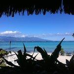 Vue depuis le bungalow plage - Vue sur Tahiti