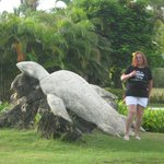 Diana & the turtle