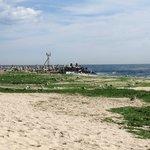 Seaweed @ Point Pleasant - Storm had passed thru day b4