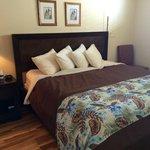 Traditional Oceanview King 1205: Bedroom