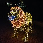 even at Zoo Lights you've gotta have animals