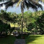 Padi cabana garden
