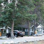 Cabin area