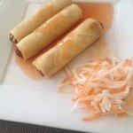 Fried nem rolls