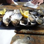 American River - amazing oysters