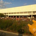 Summer at Tretyakov Modern