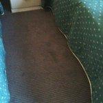 Carpet in room 203
