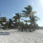 foto della spiaggia