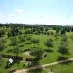 parque y vistas
