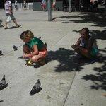 Дети кормят голубей.