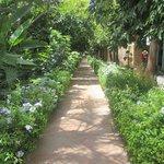 jardin vers bibliothèque des voyageurs