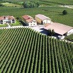Azienda Agricola Monte del Fra