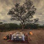 Bush Dinner
