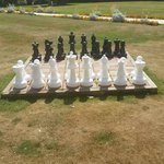 Anyone for chess