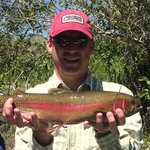 "24"" Rainbow Trout"