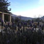 vista desde el jardin de la entrada de la posada