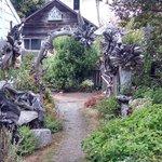 Driftwood Sculpture Garden