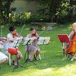 Le quatuor à cordes (animation l'après-midi, durant certains apéritifs et en soirée)