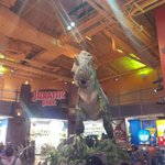 Anima Dinosaur