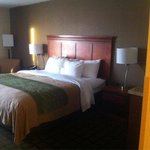 Comfort Inn Cleveland Foto