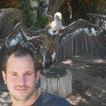 vautour jungle park