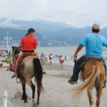 Horse ride on the beach - Not free