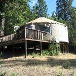 Onze yurt