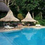 Pool and Ceiba Tree Lodge