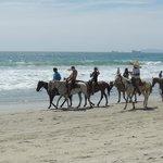 Rosarito Beach on Horseback