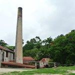 The rum factory