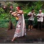 Wedding Song & Dance