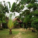 Photo de Smilebeach Resort