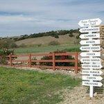 Foxen Wine Trail
