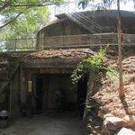 Bunker underneath coastal artillery battery