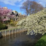 River View (Side of Lade Braes Walk, 10 Mins walk to the starting point of the nice walk)