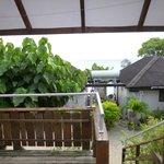 vue de notre bumgalow jardin