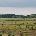 Longstreet's assault - the third day