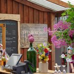 Sharpham Vineyard Cafe