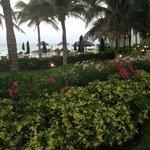 Beautiful landscaping