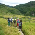 Rice Terraces of the town of Piglisan in North Sagada