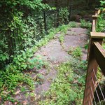 Fernbank Forest Mismanagement