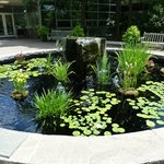 Ga State Botanical Gardens