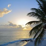 Sunrise Pineapple Fields Beach