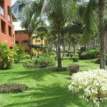 jardines que rodean las habitaciones