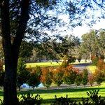Kirkton park grounds.