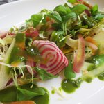 Misticanza salad at Babbo Patio and Lounge