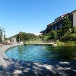 piscine bio