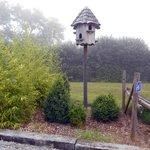 De tuin met vogelhuis