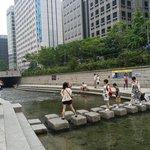 корейцы отдыхают