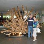 Lobby -al fondo raíz de Thailandia del Sunami de 2009